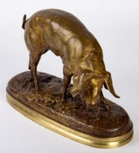 Cochon Par Victor Chemin (1825-1901)