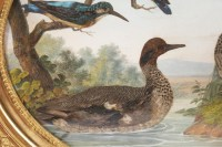 Paire de gouaches ovales figurant des oiseaux dans la nature, XIXe siècle