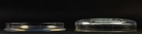 "Rene Lalique : Opalescent Box ""Muguets"""