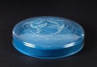 Boîte « Deux Sirènes » verre opalescent - base satin bleu de René LALIQUE