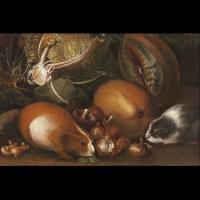 Nature morte aux cochons d'Inde – Atelier de Giovanni Paolo Castelli lo Spadino