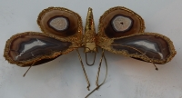 1970' Applique Papillon Signée Isabelle Faure Avec Ailes En Agates 51 X 63 CM