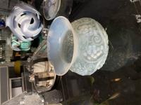 """Rene Lalique : opalescent Vase """"Fontainebleau"""""""
