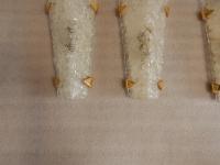 1950/70′ Série de 4 Appliques en Verre Granité DLG Murano Avec Griffes en Laiton Doré Attribué A Maison Arlus
